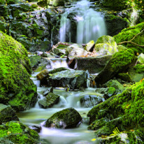 ©-stockphoto-graf-Fotolia.com